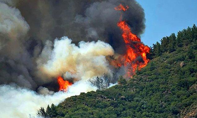 Halkımız ve ünlü isimlerimiz seferber olmuş bir şekilde yangını söndürmek için tüm imkanları zorluyor.
