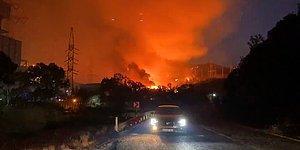 Göz Göre Göre... Yangın Milas'taki Termik Santrale Girdi!