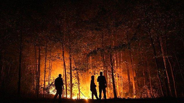 """""""Dünya yangın tehdidi altında"""""""