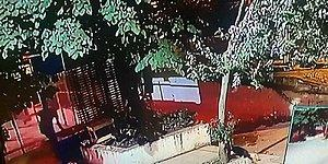 Üsküdar'da Bir Kediyi Tekmeleyerek Öldüren Caninin Kan Donduran Görüntüleri