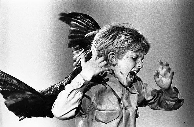 39. The Birds (1963)