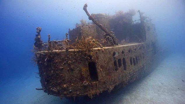 15. buzun ortasında kapana kısılan kayıp gemiler (kanada)