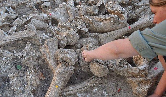 16. mamut dişinden yapılma mimari yapı (rusya)