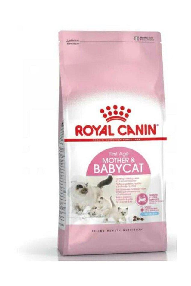 4. Eğer kedinizin üremesine ve doğum yapmasına izin verdiyseniz beslenmesini de buna göre sağlamalısınız.