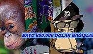 NFT'ler Yine İş Başında! BAYC Bir Orangutan Yardım Kuruluşuna 850.000 Dolar Bağışladı