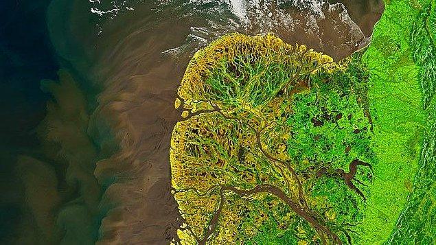3. Alaska'daki Yukon-Kuskokwim Deltası, 19 Mayıs 2021