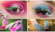 Farklı Türlerdeki Böceklerin Desenlerini Göz Makyajına Dönüştüren Makyaj Artisti: Duran Jay
