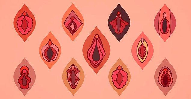 5. Her kadında hymen (halk arasında kızlık zarı olarak bilinir) bulunmaz!