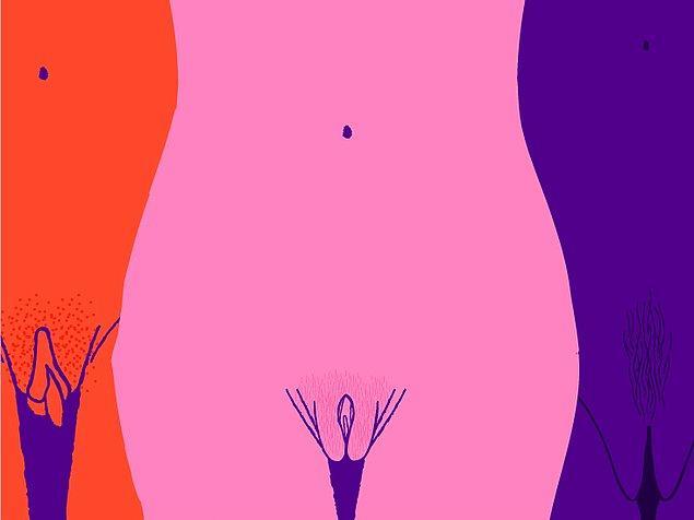 4. Vajinamız içinde binlerce bakteriyi barındırmaktadır.