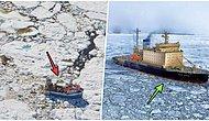 Yapılan Son Araştırmalar Sonucunda Kanada'nın Buzullarında Ham Petrolü Ayrıştırabilen Bakteriler Bulundu