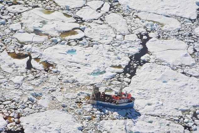 Önümüzdeki yıllarda kutup denizlerinde büyük çaplı iklimsel değişikliler görebiliriz.