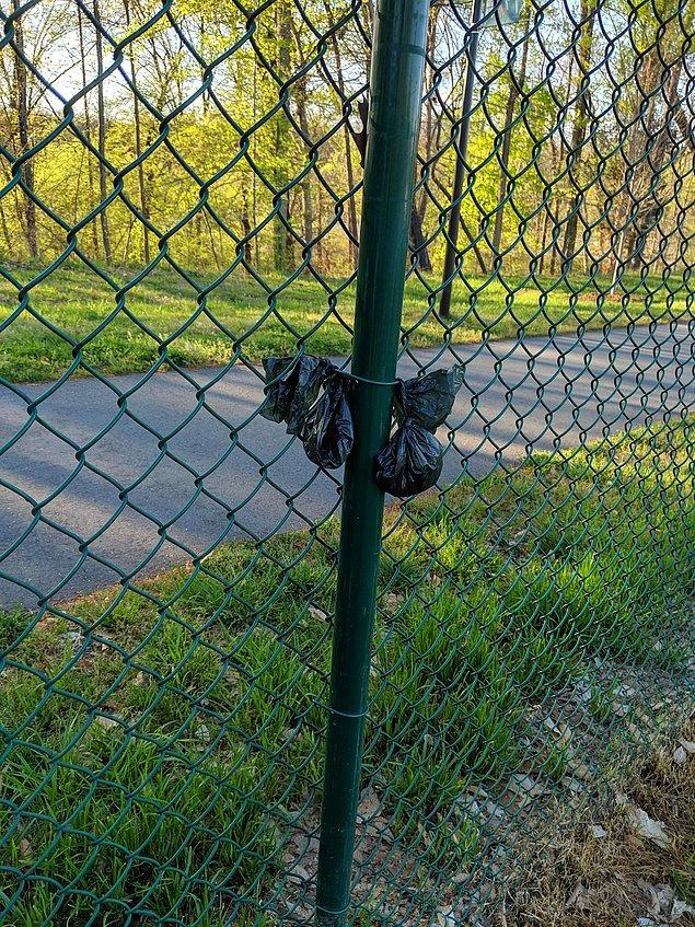 19. Köpek parkındaki sahipler, kaka torbalarını çitlere asarak iyi bir iş yaptıklarını düşünmüşler.
