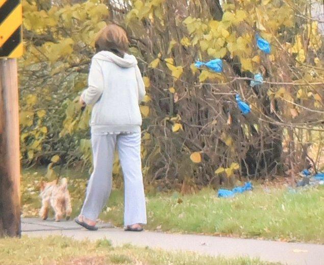 20. Bu köpek sahibi ise kaka torbasını her gün aynı ağaca fırlatıyor.