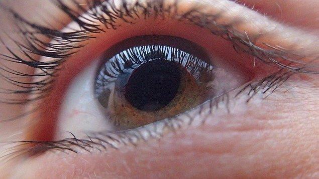 12. Karşınızdaki kişinin gözbebeklerinin büyümesi ve küçülmesinin bile aslında bir anlamı var. Normalde ışığa göre büyüyüp küçülen gözbebeklerinin, beraber olduğunuz insana ilgi duyduğunuzda büyüdüğü ancak hoşlanmadığınızda küçüldüğü söyleniyor.