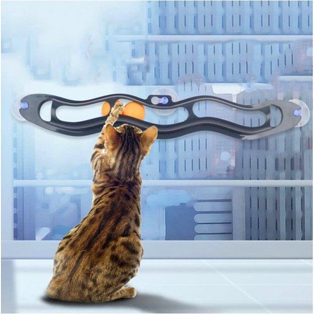 9. Cama yapışabilen top istasyonu minik kedinizi epey bir oyalayacak!