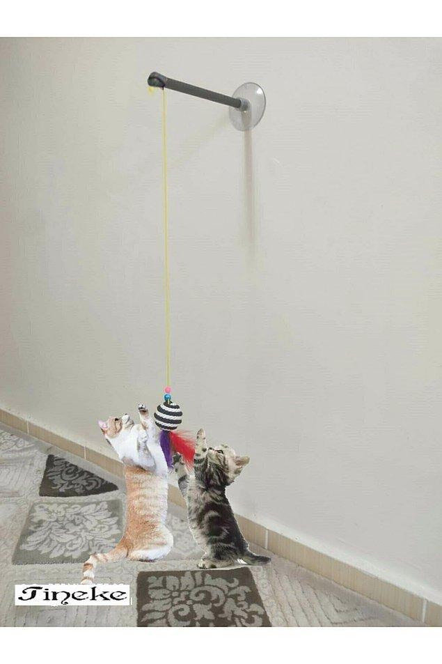 12. Kedinizin enerjisini şıp diye alacak vakumlu kedi oltası evinizdeki yerini almak için hazır.
