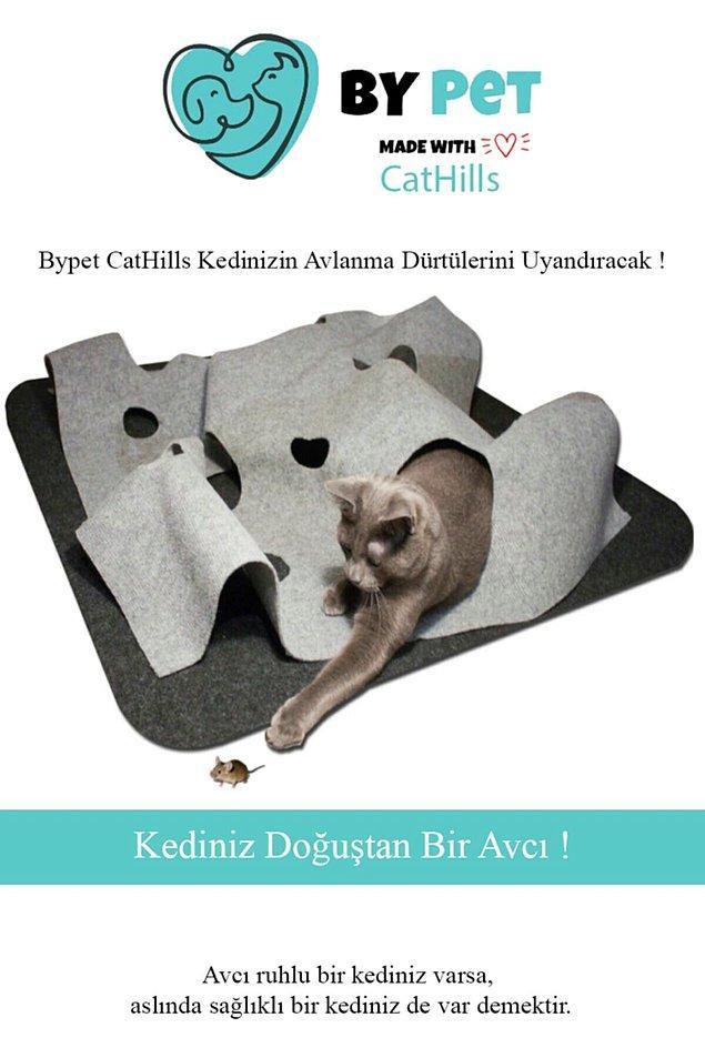 14. İnteraktif oyuncaklar kedinizin zihinsel gelişimi için önemli.