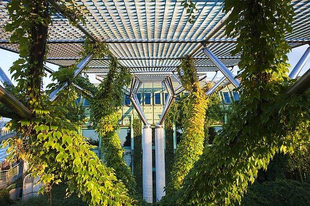 14. 15 bin metrekarelik yeşil alanla çevrili Varşova Üniversitesi kütüphanesi