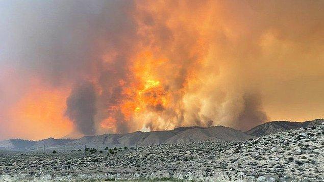 8. Amerika'nın Batı bölgelerini ise tamamen yangınlar kapladı. 100 binden fazla insan evlerini terk etmek zorunda kaldı ve 1200 evin hasar aldığı belirtildi.