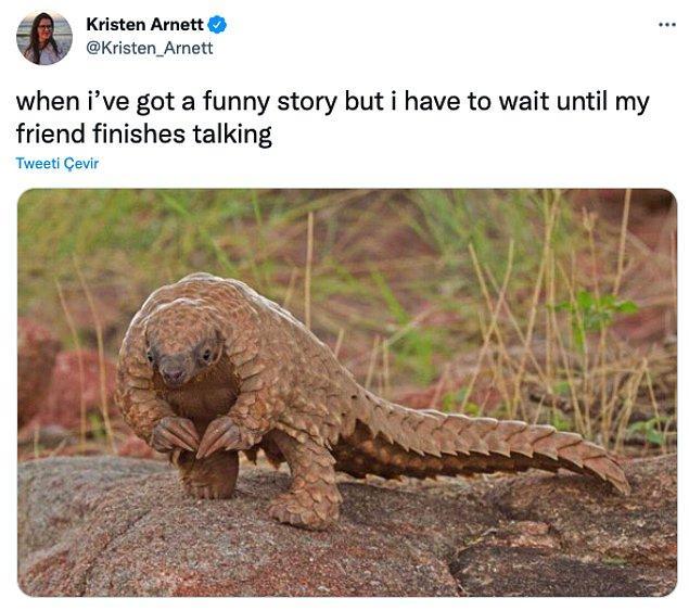 """13. """"Komik bir hikayem vardır ama arkadaşlarımın konuşmayı bitirmesi için beklemek zorundayımdır."""""""