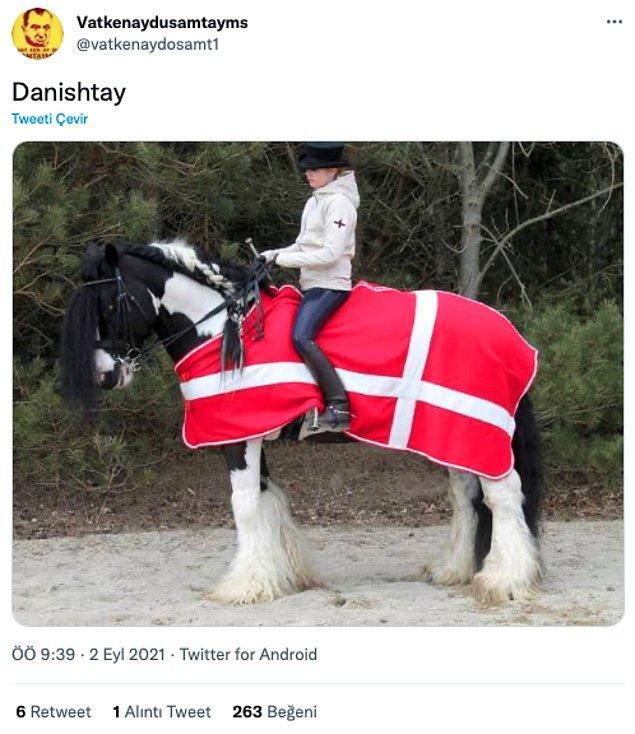 1. Danishtay > Arap atı o zaman.