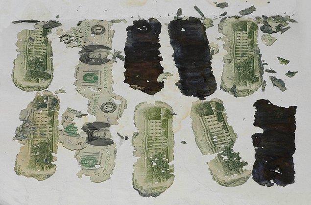 Yetkililer D.B. Cooper'ın kimliği konusunda bir sonuca varamamış olsa da 1980 yılında Portland civarlarında bir çocuk, bir kutu içerisinde 20 dolarlık banknotlardan oluşan tam 5800 dolar buldu.