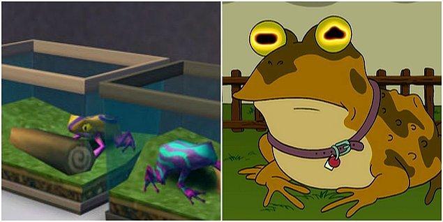 3. Bu kurbağanın gözlerine uzun uzun bakmamanızı öneririz.