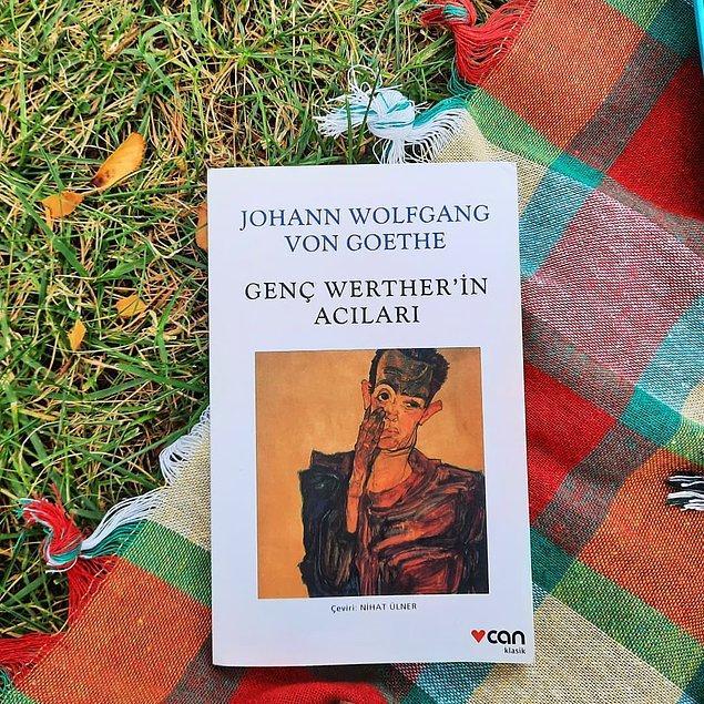 8. Genç Werther'in Acıları - Goethe