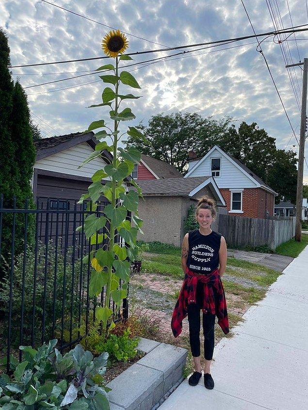 """1. """"Gördüğüm en uzun ayçiçeğine bakın! Karşılaştırma için benim boyun 177 santimetre."""""""