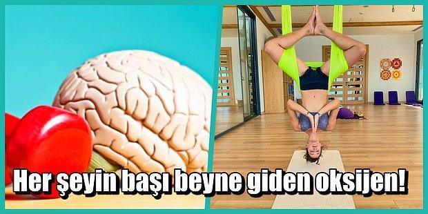 Küçük Değişikliklerle Beyin Performansını Arttırmanın Etkili Yolları