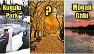 Denizi Yoksa Mogan'ı Var! Ankara'da Sevdiklerinizle Dört Mevsim Ziyaret Edebileceğiniz En Romantik Yerler