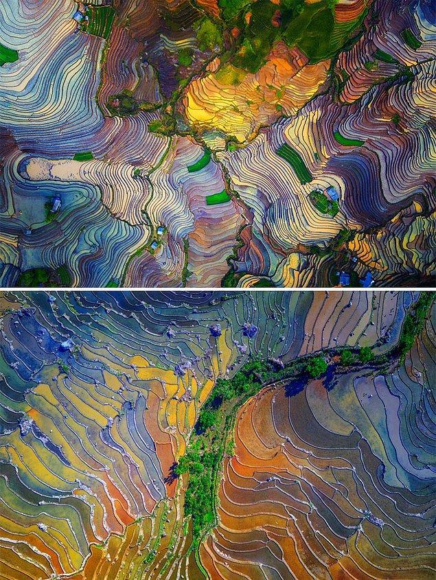 5. Renkli Teraslar - Tuan Nguyen Tan (Seri Kategorisinde Yüksek Övgüye Değer Ödülü)