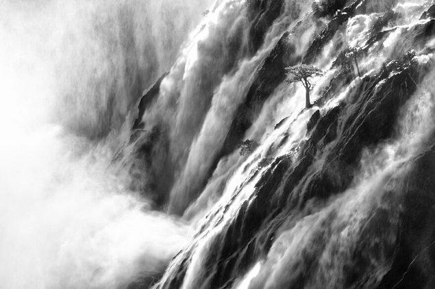 24. Güçlü Ruacana - Jan Roode (Doğa Kategorisi Yüksek Övgüye Değer Ödülü)
