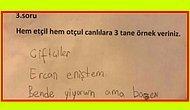 Sınav Kağıtlarına Verdikleri Birbirinden Komik Cevaplarla Hepimizi Gülmekten Yerlere Yatıran 19 Öğrenci