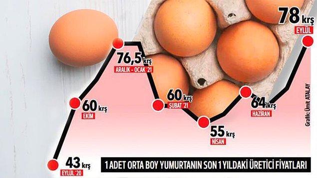 Yumurta fiyatlarının grafiği 📌