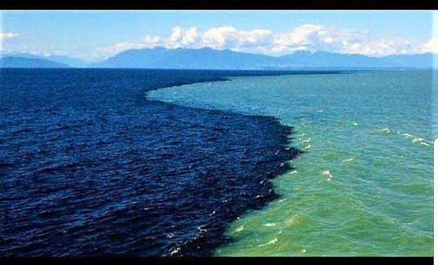 9. Kanada, Vancouver Adası yakınlarındaki Georgia Boğazı'nda Pasifik Okyanusu ile birleşen nehir: