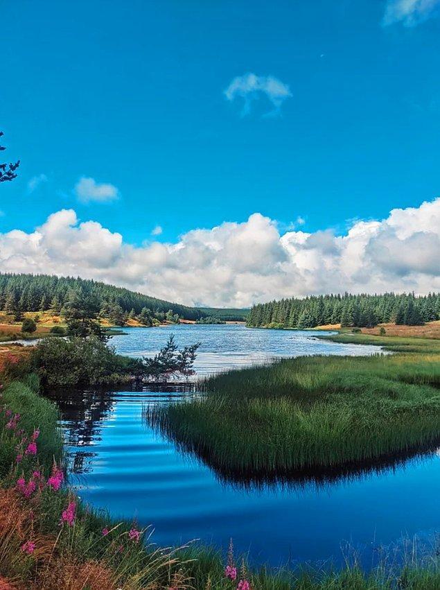 3. Fransa'daki Lac Du Charpal'in durgun güzelliği: