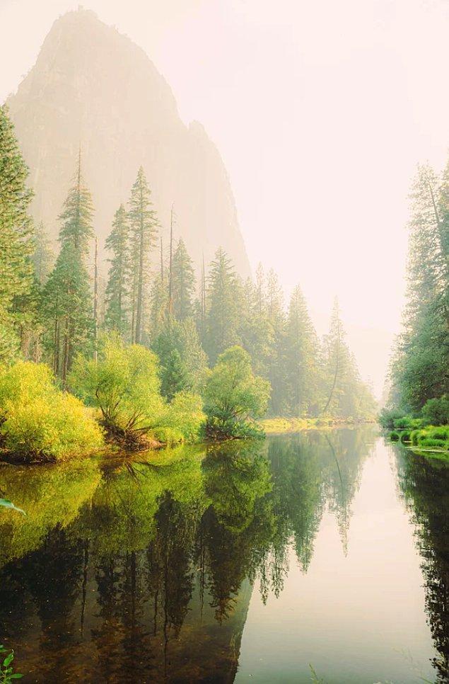 6. Yosemite Ulusal Parkı'nda sisli bir öğleden sonra: