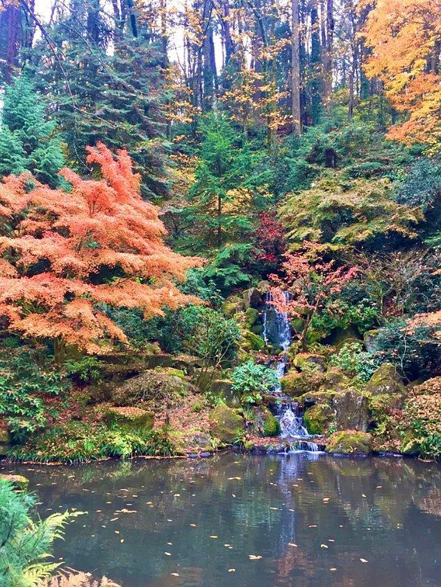 12. Portland Japon Bahçeleri: