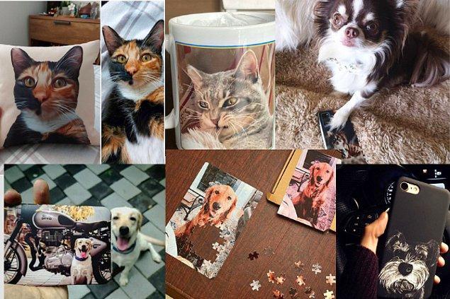 6. Evcil hayvanlarımız için harika tasarımlar yapabilirsiniz.