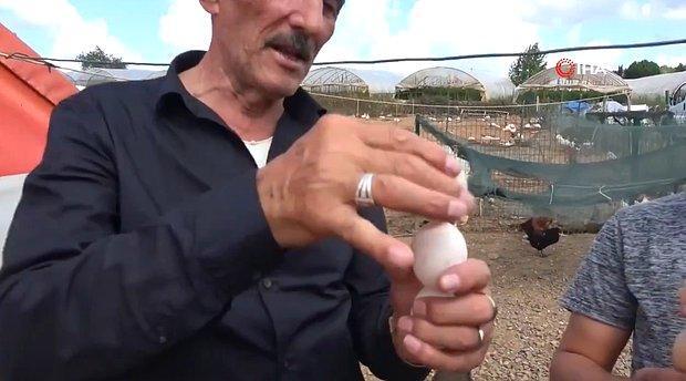 Aldığınız Yumurtanın Taze Olup Olmadığını Nasıl Anlarsınız? 55 Yıllık Usta 'Dönme' Yöntemini Anlattı