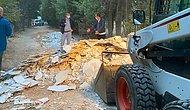 Üsküdar Belediyesi'nden Validebağ Korusu'na Sabah Operasyonu: İş Makineleri ile Girip, Moloz Döktüler...