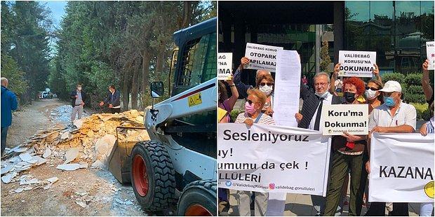 """Üsküdar Belediyesi Tarafından """"Şafak Operasyonuyla"""" Moloz Dökülen Validebağ Korusu'nda Neler Oluyor?"""
