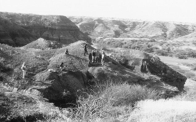 Pek çok arkeolog, Lomekvi 3 kazı alanındaki kalıntıların 3.3 milyon yıl önceye dayandığından şüphe duyuyor.