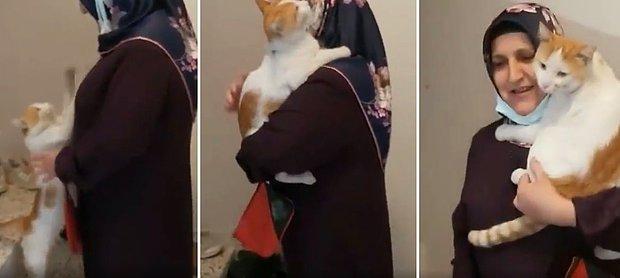 İnsan Dostunu Kapıda Bekleyip Kendini Kucağa Aldıran Kedi ve İnsan Dostunun Muhteşem Anları
