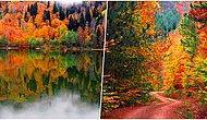 Sonbaharın Tadını Çıkarırken Rüya Gibi Bir Kamp Yapabileceğiniz 15 Büyüleyici Kamp Yeri