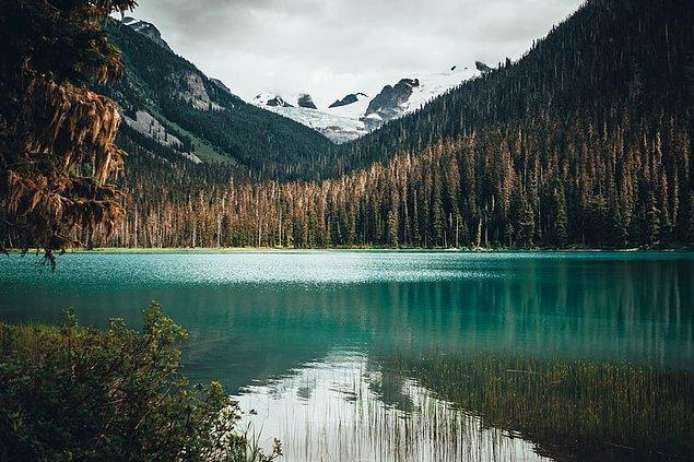 9. Rocky Dağları, Britanya Kolumbiyası