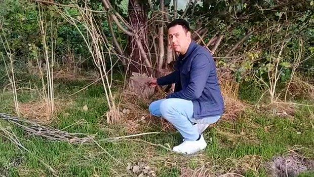 Hırsızlar Metrelerce Uzunluktaki Kavak Ağaçlarını Çaldı