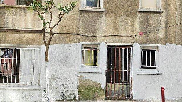 İstanbul'da Dehşet Evi! Kediyi Boyayıp Cama Asıp 'Ben Sanat Yaptım, Siz Ne Anlarsınız' Dedi