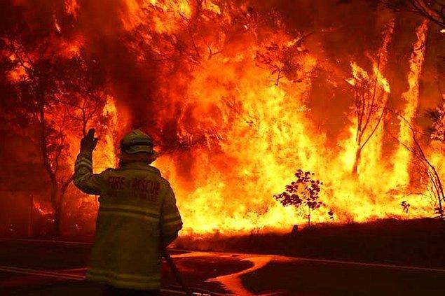 Dünyada ve ülkemizdeki yangınların hepsi değil ama çoğu insan kaynaklı yangınlar.